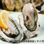 厚岸産南谷水産直送Lサイズ牡蠣
